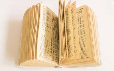 plebiscyt, słownik, słowo roku